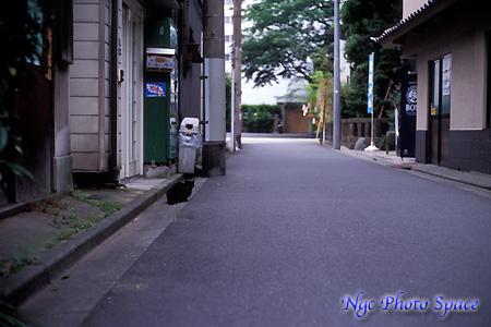 200807101